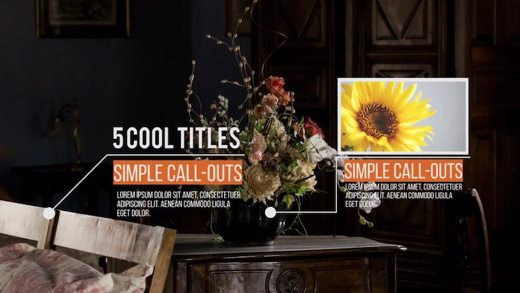 Call-Outs V2: Premiere Pro Templates