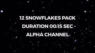 12 Snowflakes Pack: Motion Graphics