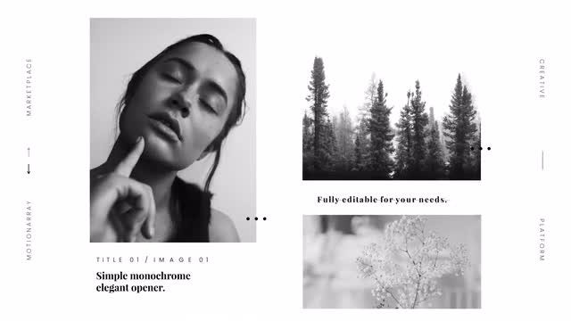 Monochrome Elegant Opener: After Effects Templates