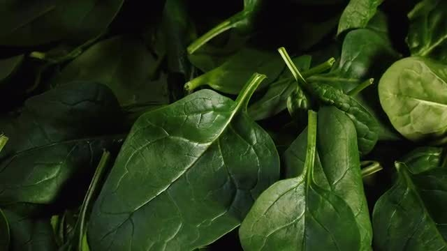 Spinach Salad: Stock Video