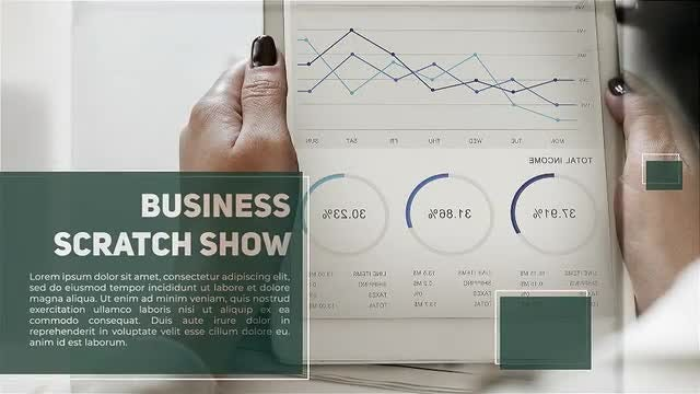 Business Scratch Show: After Effects Templates