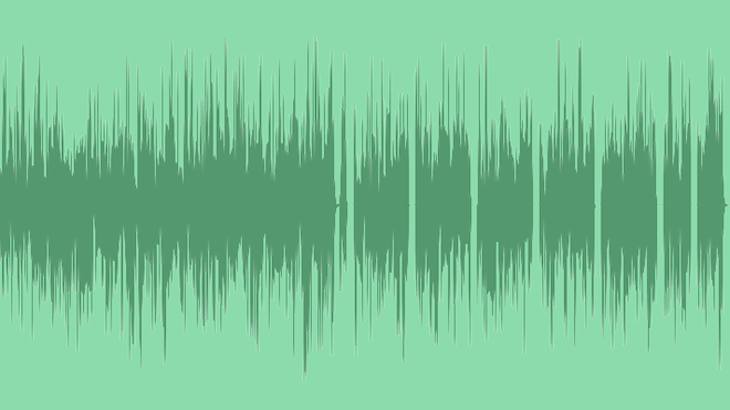 The Funkers: Royalty Free Music