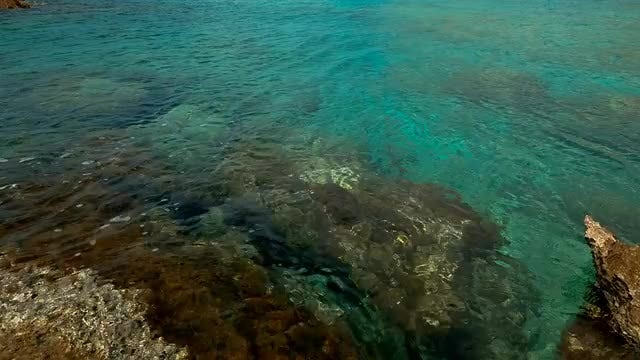 Pristine Waters: Stock Video
