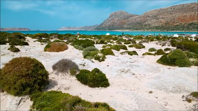 Amazing Pristine Beach: Stock Video