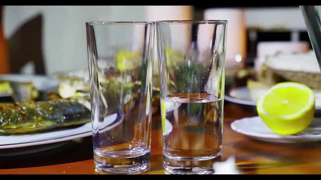 Turkish Raki Dinner: Stock Video