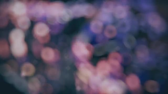 Pink-Blue Cinematic Bokeh Lights: Stock Motion Graphics