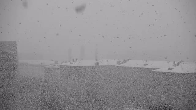 Massive Snowfall: Stock Video