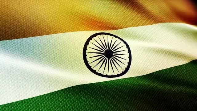 Indian Flag: Stock Motion Graphics