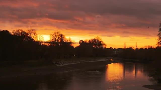 Sunset In Marshland: Stock Video