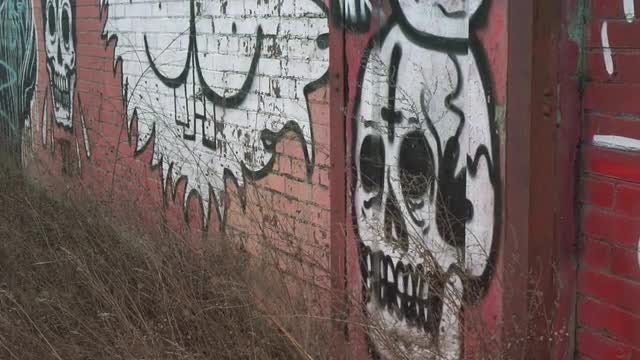 Graffiti Skull: Stock Video
