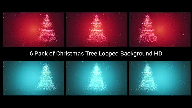 6 Pack of Christmas Tree Looped Background HD: Stock Motion Graphics