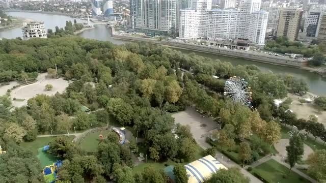 City Park With Trees: Stock Video