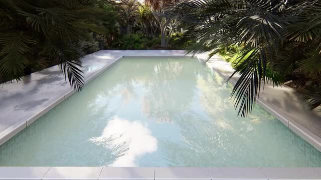 Pool In Lost Tropical Island: Stock Motion Graphics