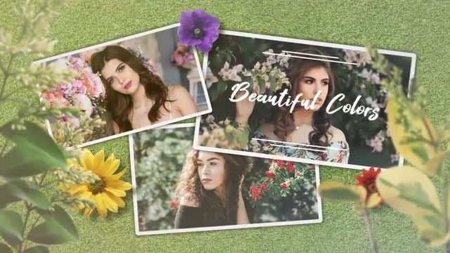 Spring Perfume: After Effects Templates