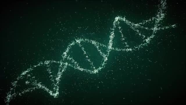 Looped DNA Strands: Stock Motion Graphics