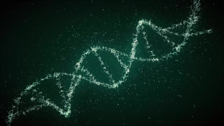 Looped DNA Strands: Motion Graphics