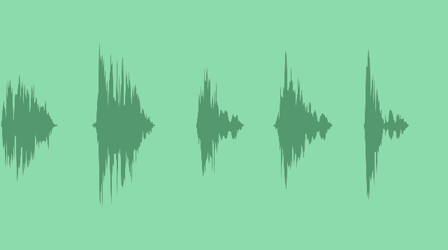 Wild Boar: Sound Effects