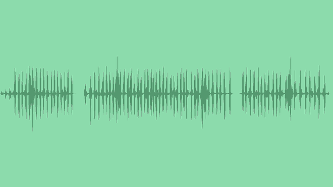 Crickets: Sound Effects