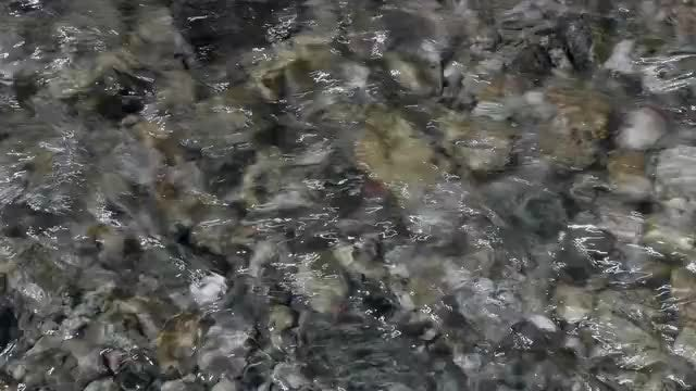Fresh Water: Stock Video