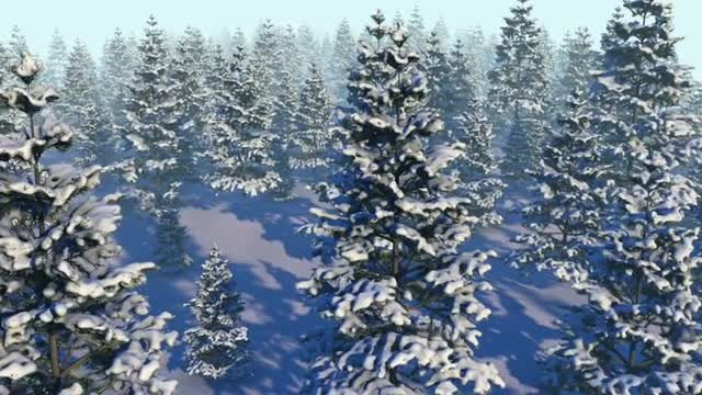 Snowy Forest Loop: Stock Motion Graphics