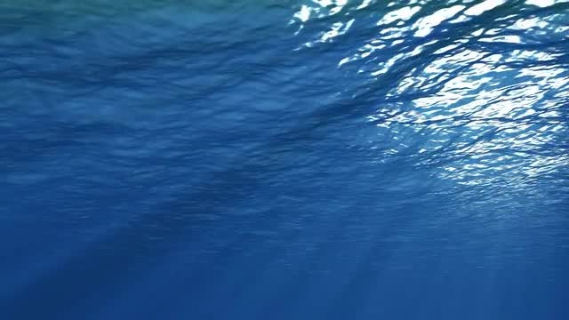 Underwater Background: Stock Motion Graphics