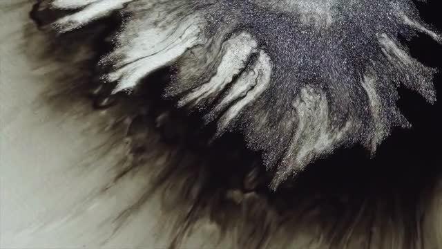 Black-Silver Tendrils Pack: Stock Video