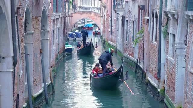 Navigating Venice's Canal: Stock Video