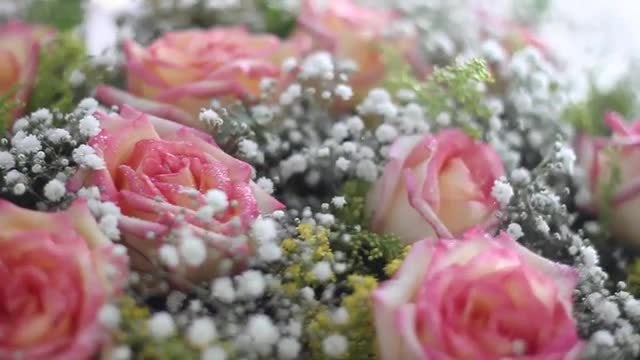 Close-Up Of Flowers: Stock Video