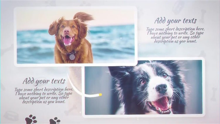 Pet Slideshow: After Effects Templates