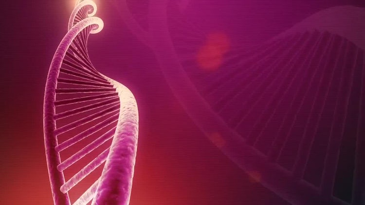 DNA Seamless Loop: Motion Graphics