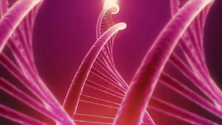 Rotating DNA Seamless Loop: Stock Motion Graphics