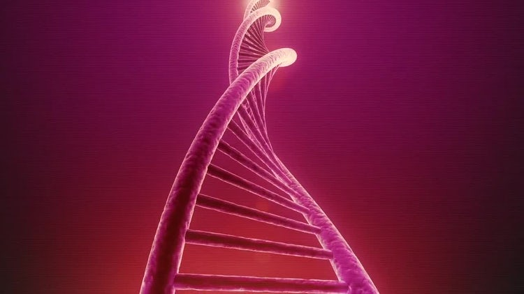 Single Rotating DNA Loop: Stock Motion Graphics