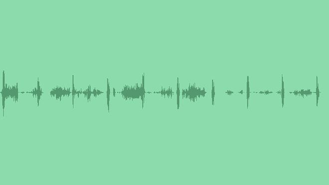Birdsong: Sound Effects