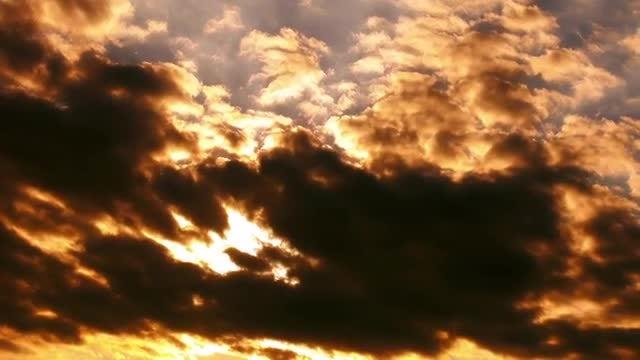 Golden Light: Stock Video