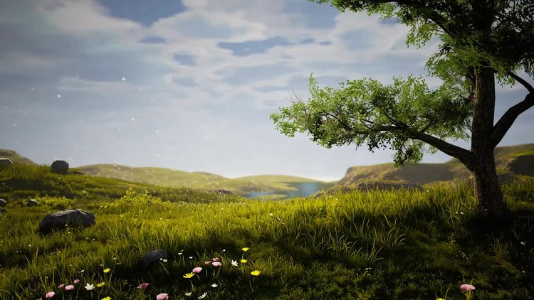 Elegant Natural Background: Stock Motion Graphics
