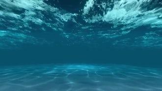 Underwater: Motion Graphics