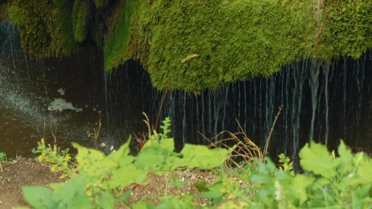 Beautiful Waterfall: Stock Video