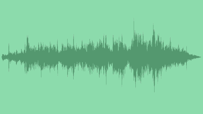 Cricket Chorus Song: Royalty Free Music