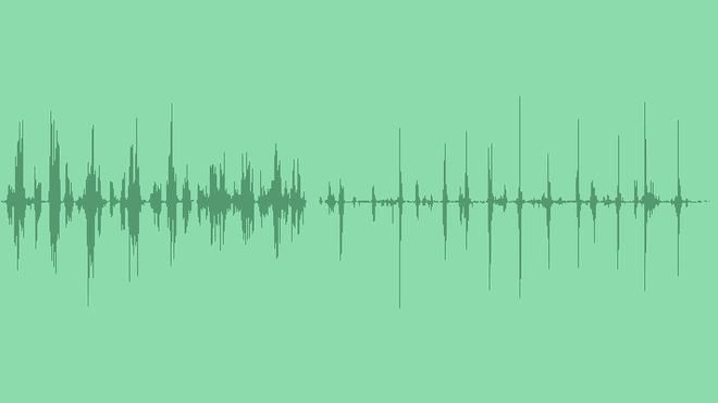 Summer Birds: Sound Effects