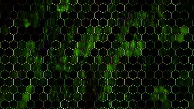 Binary Hexagon: Stock Motion Graphics