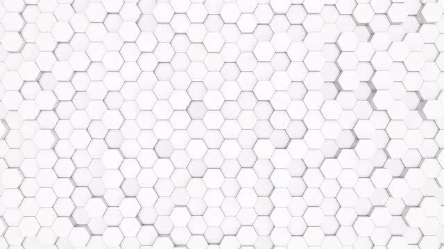 White Hexagon Motion Background: Stock Motion Graphics