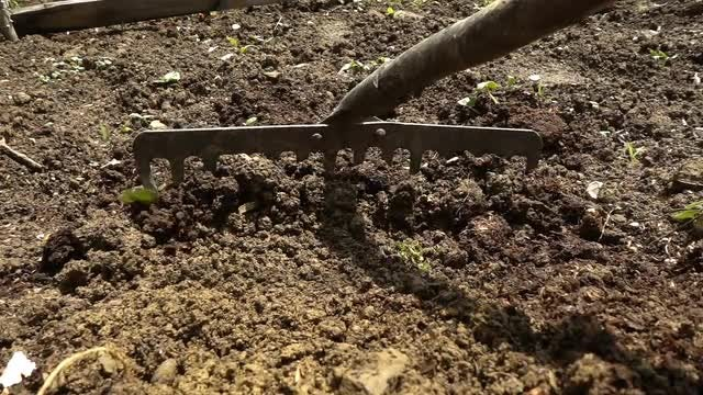 Raking Soil: Stock Video