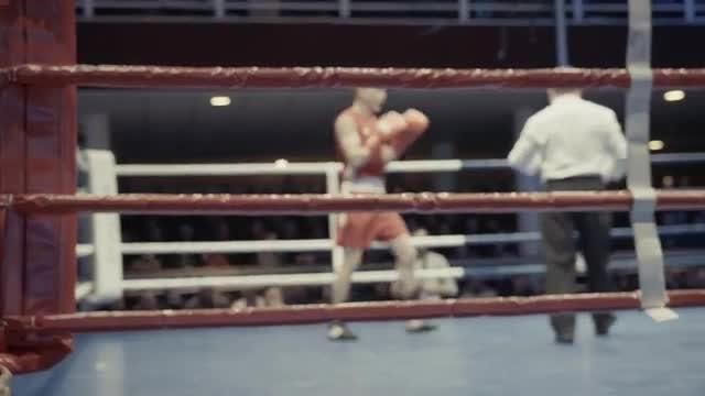 Boxing Match: Stock Video