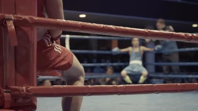 Boxers Take A Break: Stock Video