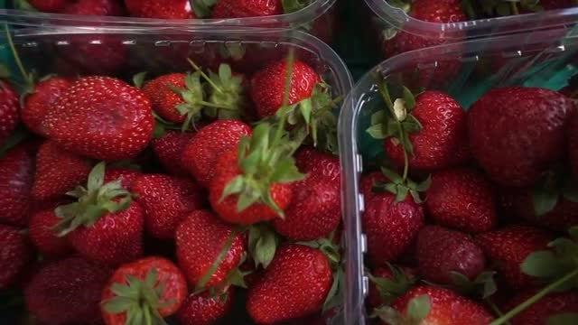 Strawberries: Stock Video