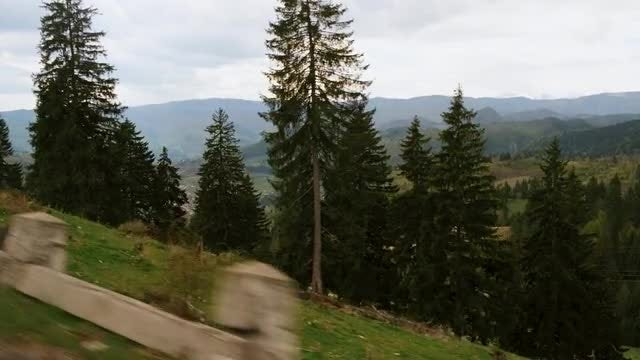 Driving Through The Mountains: Stock Video