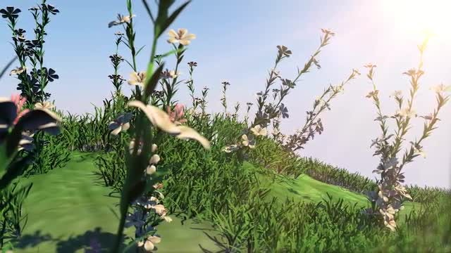 Summer Flower Garden: Stock Motion Graphics