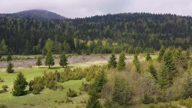 Beautiful Nature Aerial: Stock Video