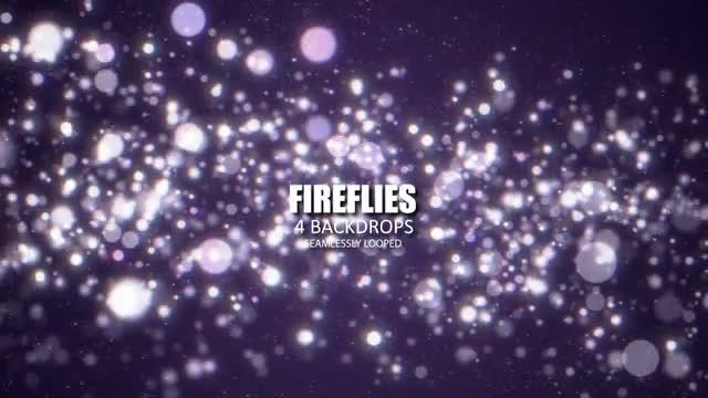 Fireflies Bokeh: Stock Motion Graphics