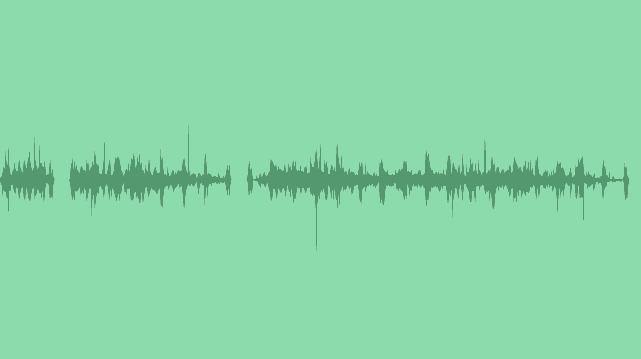 Walk In The Forest: Sound Effects